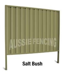 salt-bush
